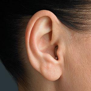 Слуховой аппарат audioservice icon